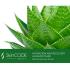 Beautypharma ALGINAT-MASK SKINCODE GENETIC'S HYDRATION AND RECOVERY Альгинатная увлажняющая маска с экстрактом алоэ-вера