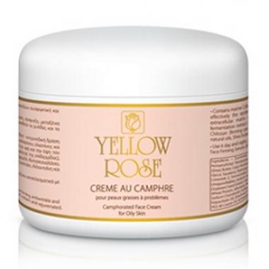 Yellow Rose CREME AU CAMPHRE TEINT Крем тонирующий с камфорой для проблемной и жирной кожи (250 мл)